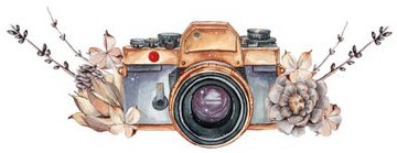 a camera logo